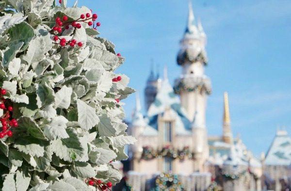 Disneyland during the Holidays