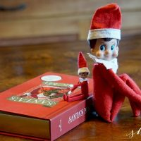 Mini Elf on the Shelf is NOW Available! (Game Changer!!)