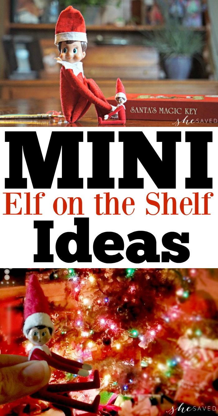 MINI Elf on the Shelf Ideas