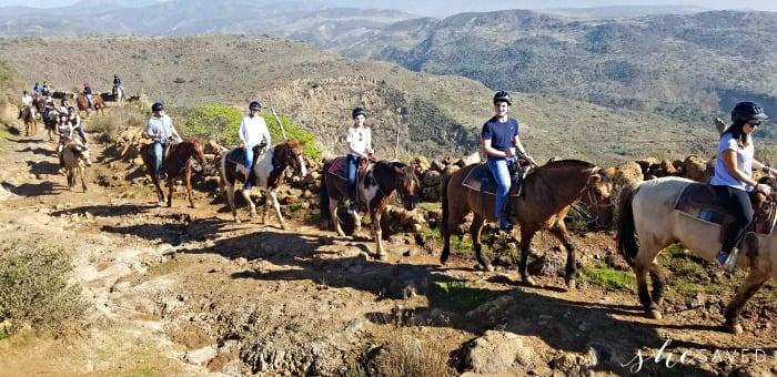 Horseback Riding Excursion Carnival
