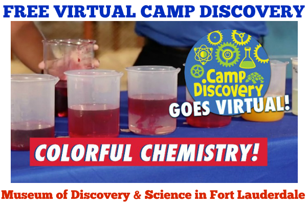 FREE Virtual Camp Discovery