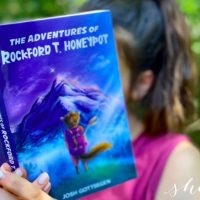The Adventures of Rockford T. Honeypot Review (a GREAT summer read for kids!)
