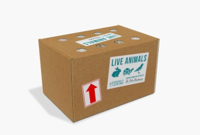 Purrble Live Animal Box