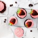 Chocolate Covered Strawberry Dessert