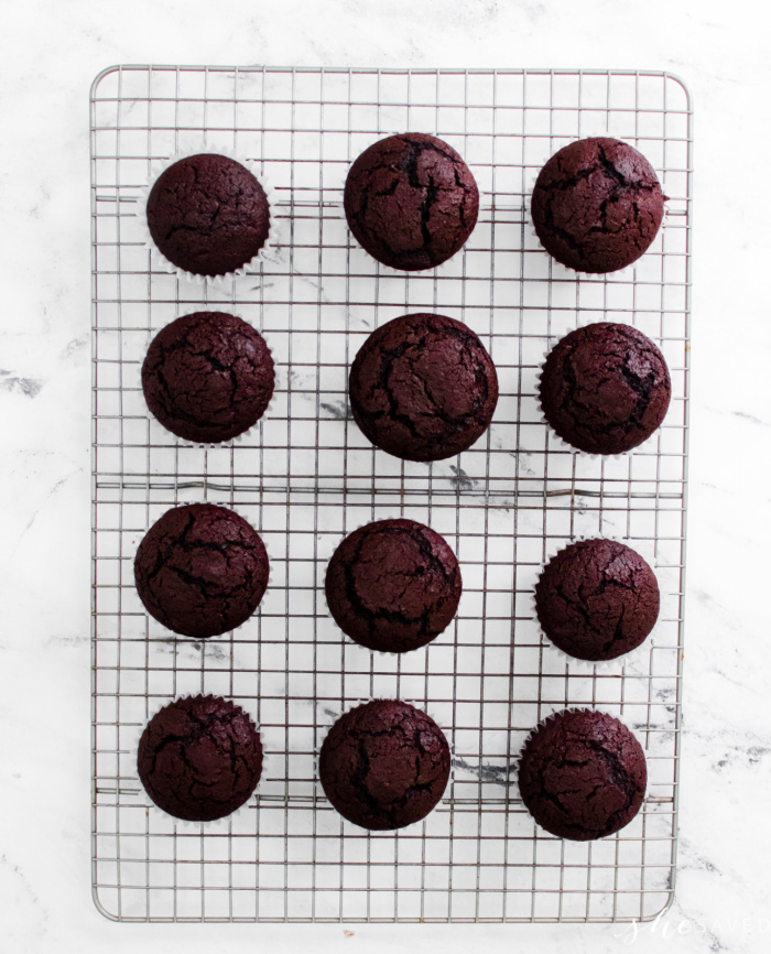 Homemade Chocolate Cupcakes Recipe