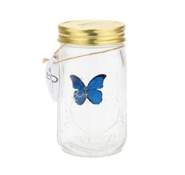 Butterfly in a Mason Jar