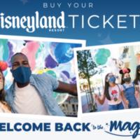 Disneyland Tickets & Disney World Park and Hotel Updates + MORE!