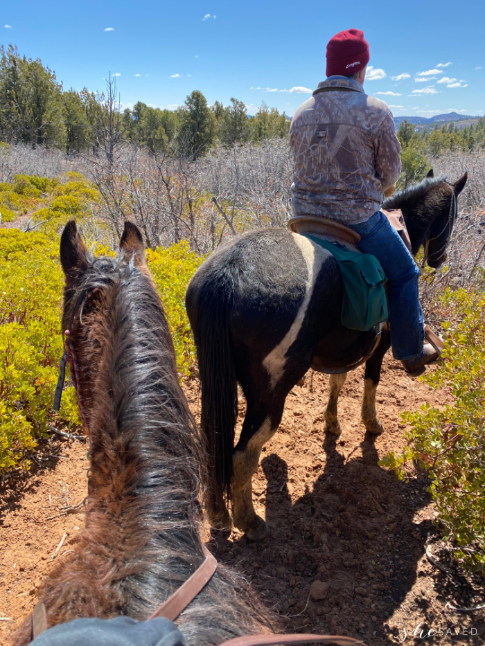 Book a horseback ride for your family in zion