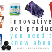 Innovative Pet Products That You Need To Know About