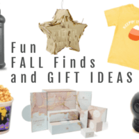 Fun Fall Finds and Gift Ideas